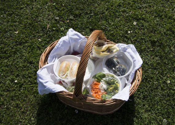 Piknikový koš v zámecké zahradě Nelahozeves